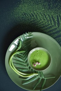 Chlorella alga oldalunkon!